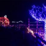 christmasisland_2013_0004